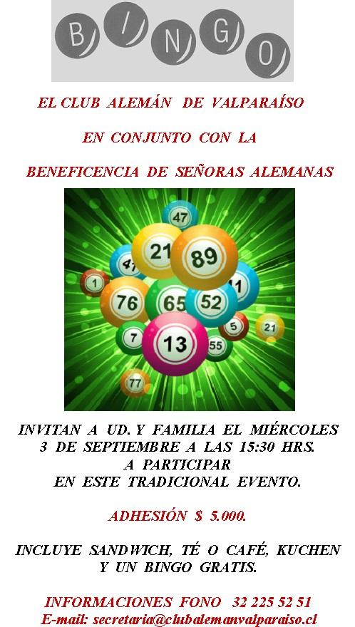 Afiche Bingo 2014